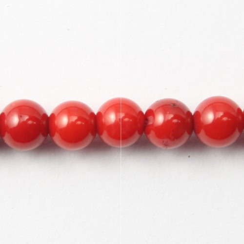Red colored round sea bamboo