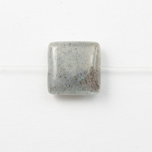 Labradorite Carré 12mm x 2pcs