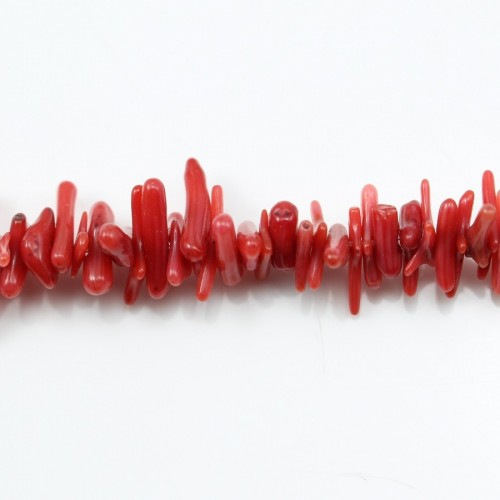 Red colored Baroque sea bamboo 16mm x 40cm