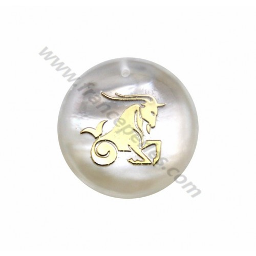 Pendant Aries mother of pearl 20mm x 1pc