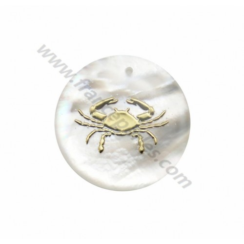 Pendant Cancer mother of pearl 20mm x 1pc
