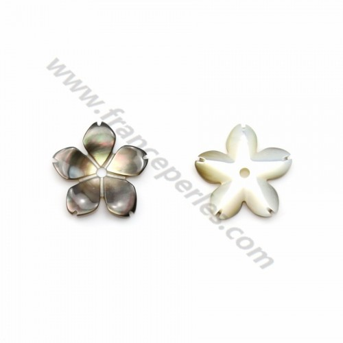 Gray mother-of-pearl 5 petal flower 10mm x 1pc