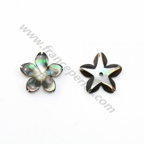 Gray mother-of-pearl 5 petal flower 12mm x 1pc