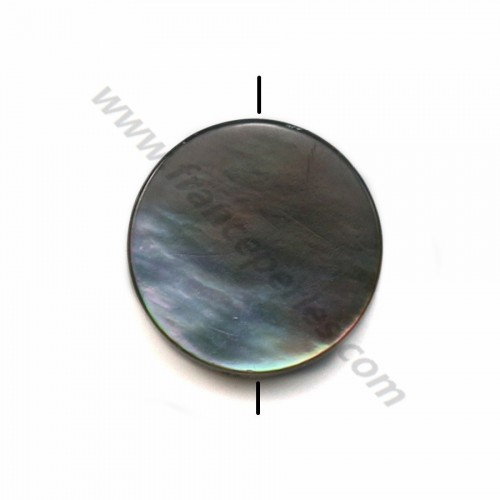 Gray mother-of-pearl flat round beads 10mm x 20 pcs