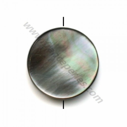 Gray mother-of-pearl flat round beads 12mm x 10 pcs