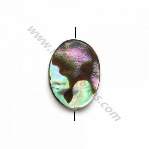 Abalone mother-of-pearl oval beads 6x8mm x 10 pcs