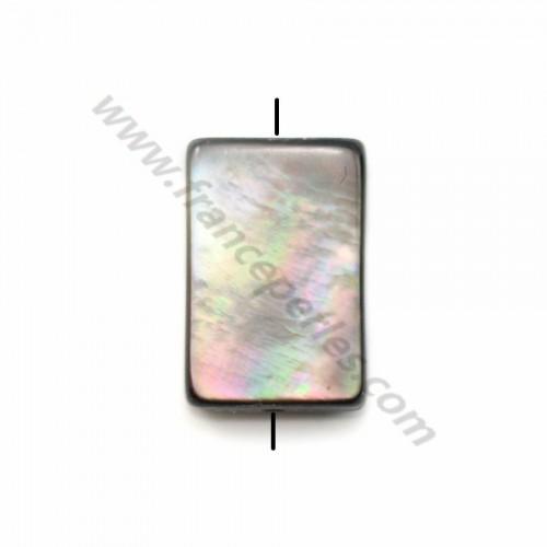 Gray Shell Rectangle 8*12mm X 5pcs