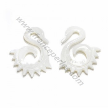 Natural shell ''Flower'' in a bag 15mm X 1 pc