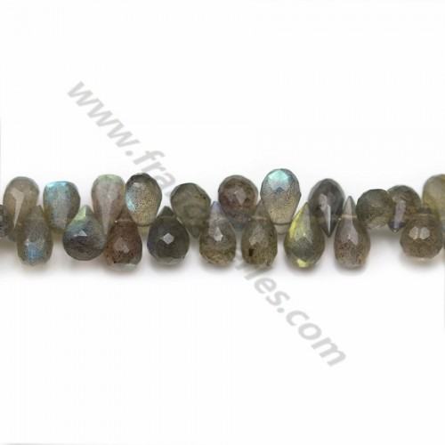 Gray Labradorite, in the shape of a faceted briolette, 5.5 * 8.5mm x 40cm