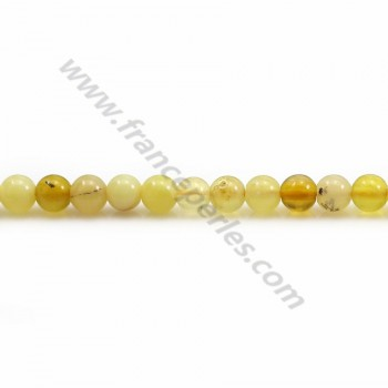 Yellow Opal round 4mm x 40cm