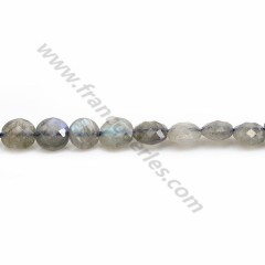 Labradorite grey, in a round flat faceted shape, 6mm x 40cm