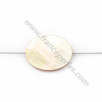Yellow Shell Oval 15x20mm X 2pcs